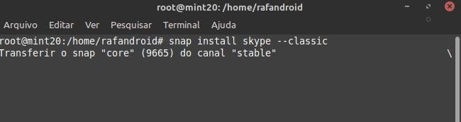 Como reativar o suporte para Snaps no Linux Mint 20