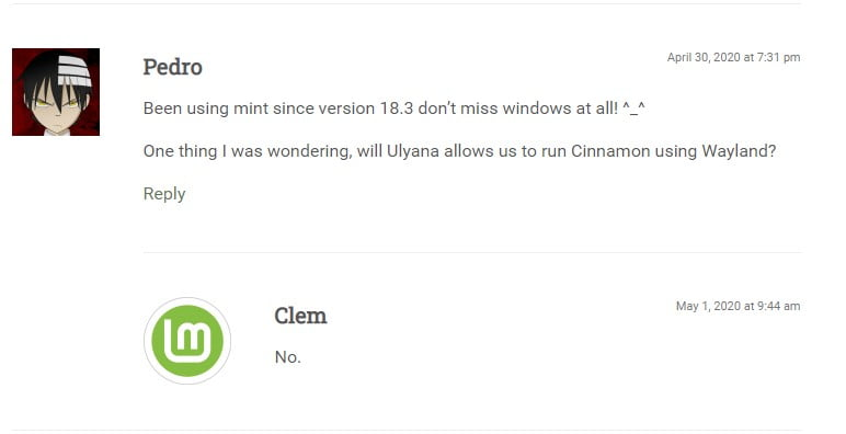 Linux Mint 20 e o suporte ao Wayland